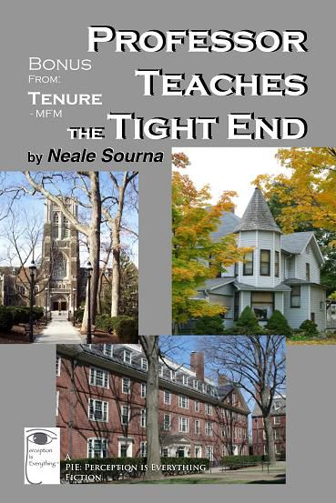 ebook cover Professor Teaches the Tight End - MFM