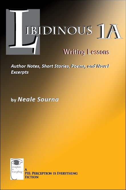 book cover Libidinous 1A - Writing Lessons: Author Notes, Short Stories, Poems, and Novel Excerpts